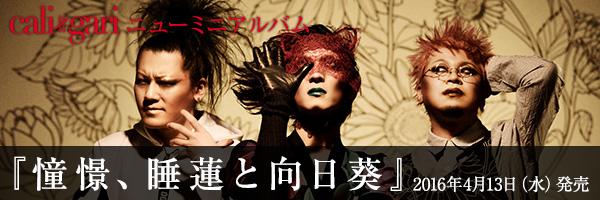 cali≠gari ニューミニアルバム『憧憬、睡蓮と向日葵』2016年4月13日(水)発売