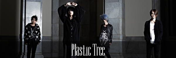 Plastic Treeインタビュー