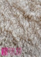 SFBD-0040 MERRY 一般流通盤【白い羊】