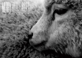 DRG-014〜017 MERRY CORE完全限定盤【白い羊】【黒い羊】
