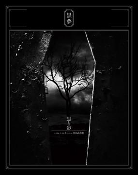 黒と影 2014.1.29 Live at 日本武道館