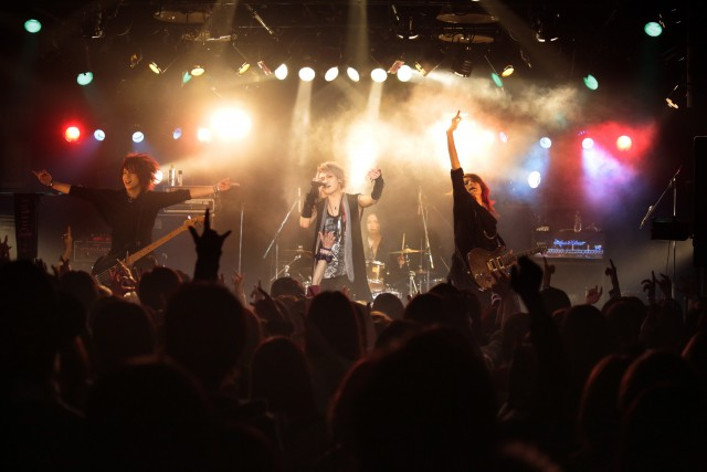 Purple Stone_live