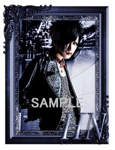 shoya SAMPLE