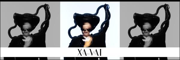 XA-VATインタビュー