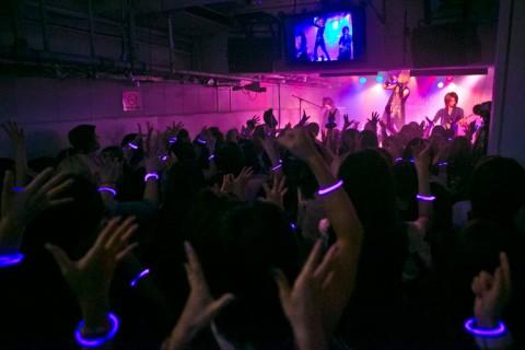 Purple Stone_LIVE PIC