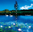 憧憬、睡蓮と向日葵