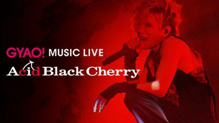 acid-black-cherry-5th-anniversary-live-erect
