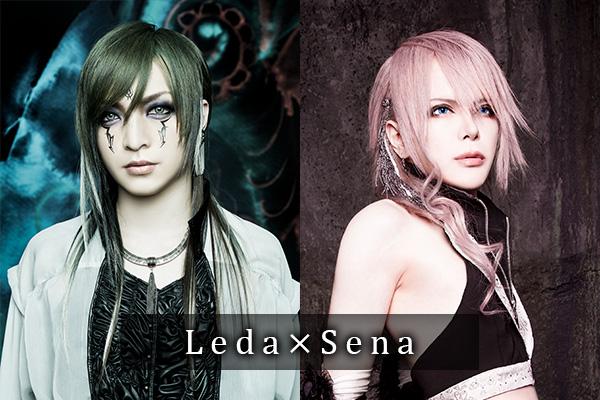 「Far East Dizain×JILUKA」スペシャル対談第4弾・ギタリスト編~Leda×Sena~